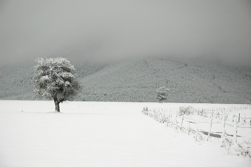 Ladik'ten Kış Manzaraları