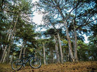 Dağ Bisikletçiliği Denemeleri, Yozgat Çamlığı Milli Parkı